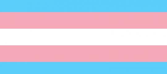 drapeau-trans